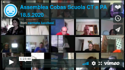 Video dell'assemblea Cobas Scuola del 18/5/2020